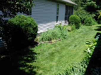 Order Lawn Care in Indianapolis, IN, 46226