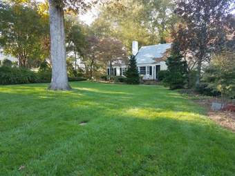 Order Lawn Care in Raleigh, NC, 27615