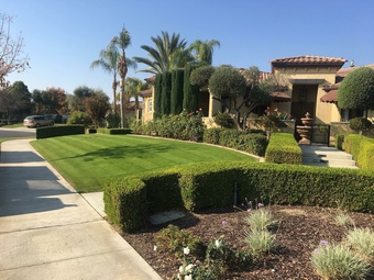 Order Lawn Care in Bakersfield , CA, 93301