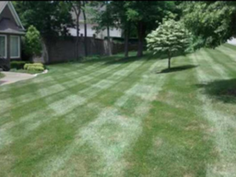 Order Lawn Care in Louisville, KY, 40228