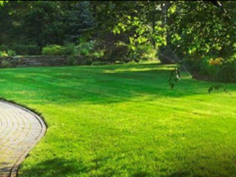 Order Lawn Care in Cary, NC, 27511