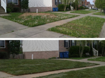 Order Lawn Care in Louisville, KY, 40299