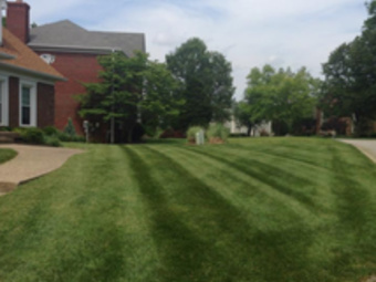 Order Lawn Care in Louisville, KY, 40219