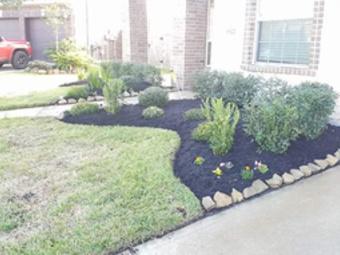 Order Lawn Care in Pasadena, TX, 77503