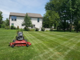 Order Lawn Care in Whiteland, IN, 46184