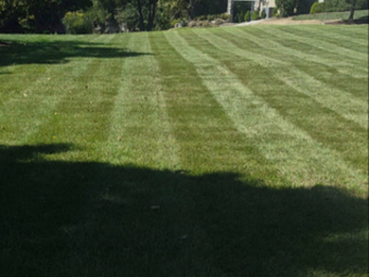 Order Lawn Care in Shepherdsville, KY, 40165
