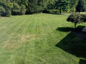 Order Lawn Care in Ellisville, MO, 63021