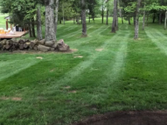 Order Lawn Care in Lawrenceburg, IN, 47018