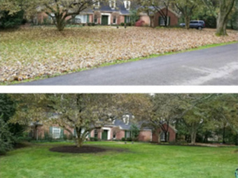 Order Lawn Care in Indianapolis, IN, 46227