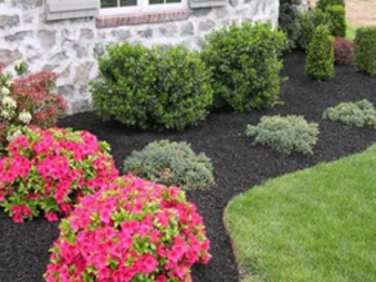 Order Lawn Care in Grove City, OH, 43123
