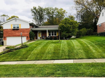 Order Lawn Care in Cincinnati, OH, 45211