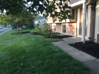 Order Lawn Care in Columbus, OH, 43228