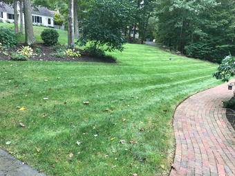 Order Lawn Care in Westbrook, CT, 06498