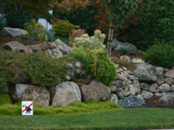Order Lawn Care in Redwood City, CA, 94063