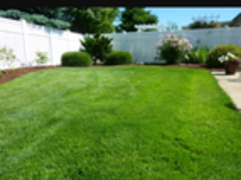 Order Lawn Care in La Vergne, TN, 37086