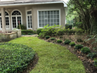 Order Lawn Care in Houston , TX, 77009