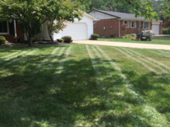 Order Lawn Care in Mentor On The Lake, OH, 44060