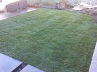 Order Lawn Care in Vista, CA, 92084