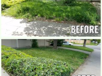 Order Lawn Care in Rio Linda, CA, 95673