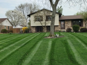 Order Lawn Care in Fairfield, OH, 45014