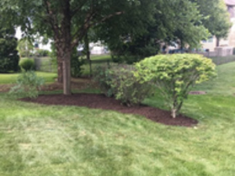 Order Lawn Care in Aurora, IL, 60505