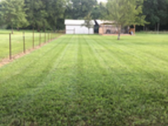 Order Lawn Care in Murfreesboro , TN, 37128