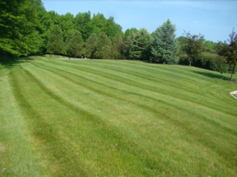 Order Lawn Care in Columbia Station, OH, 44028