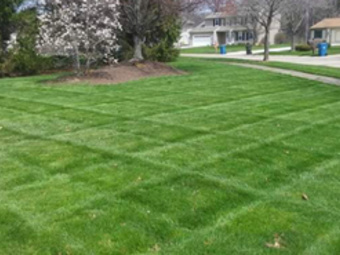 Order Lawn Care in Brook Park, OH, 44142