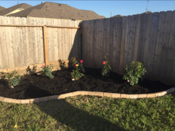 Order Lawn Care in Houston, TX, 77014