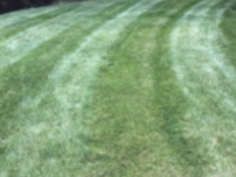 Order Lawn Care in Pittsburgh, PA, 15241
