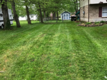 Order Lawn Care in Batavia , OH, 45103