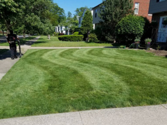 Order Lawn Care in Cleveland, OH, 44104