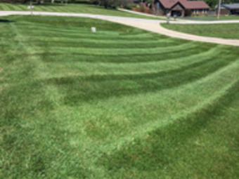 Order Lawn Care in Coatesville , IN, 46121