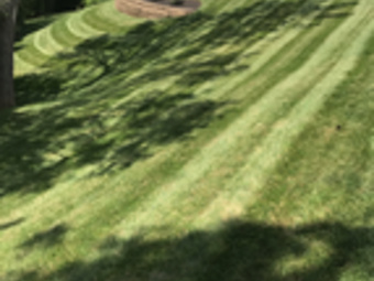 Order Lawn Care in Cincinnati , OH, 45216