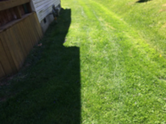 Order Lawn Care in Alexandria, IN, 46001