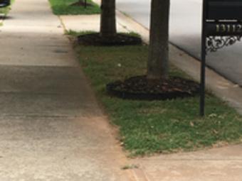 Order Lawn Care in Huntersville, NC, 28078