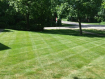 Order Lawn Care in West Chicago, IL, 60185