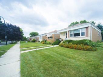Order Lawn Care in Cicero, IL, 60804