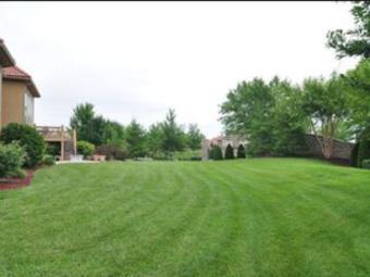 Order Lawn Care in Lenexa, KS, 66216