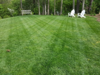 Order Lawn Care in Hermitage , TN, 37076