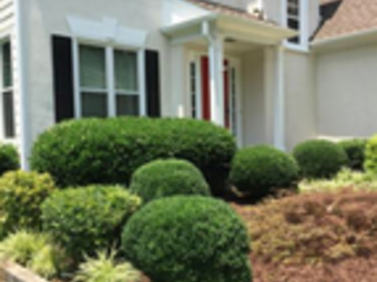 Order Lawn Care in Gainesville, GA, 30506