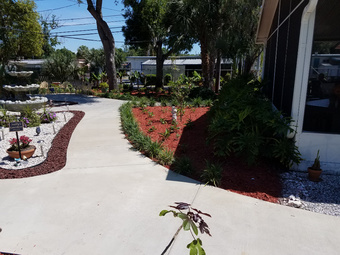 Order Lawn Care in Pinellas Park, FL, 33782