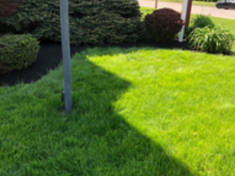 Order Lawn Care in Leesburg, OH, 45135
