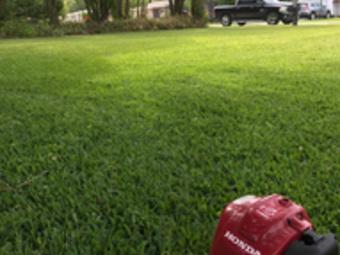 Order Lawn Care in Lake Helen , FL, 32744