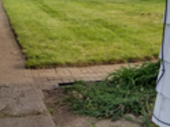 Order Lawn Care in Elyria , OH, 44035