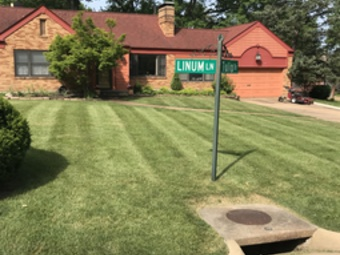Order Lawn Care in Webster Groves, MO, 63119