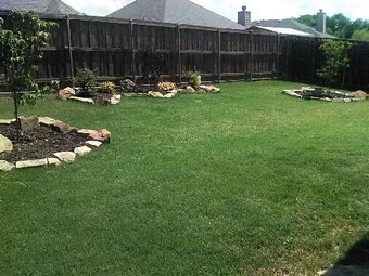 Order Lawn Care in Princeton, TX, 75407