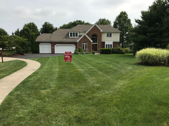 Order Lawn Care in Columbus, OH, 43235