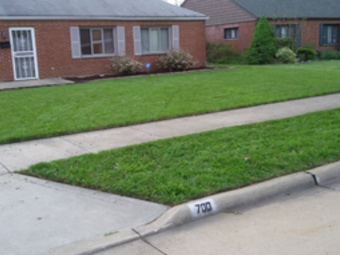 Order Lawn Care in Cleveland, OH, 44119