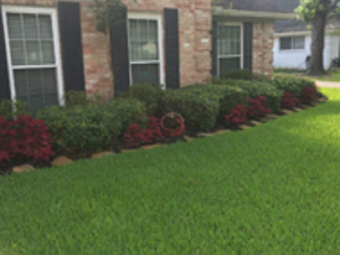 Order Lawn Care in Conroe, TX, 77304